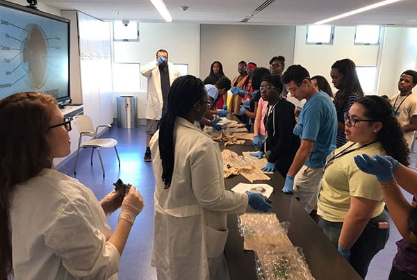 Eye Ball Dissection at Frost Museum Community Impact